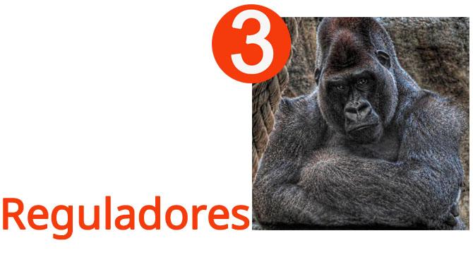 gestos reguladores gorila