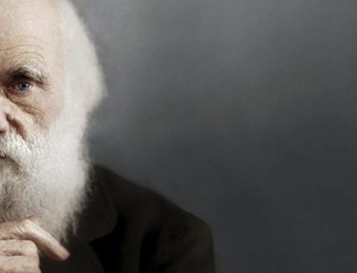 Charles Darwin, ¿emblemático o adaptador?
