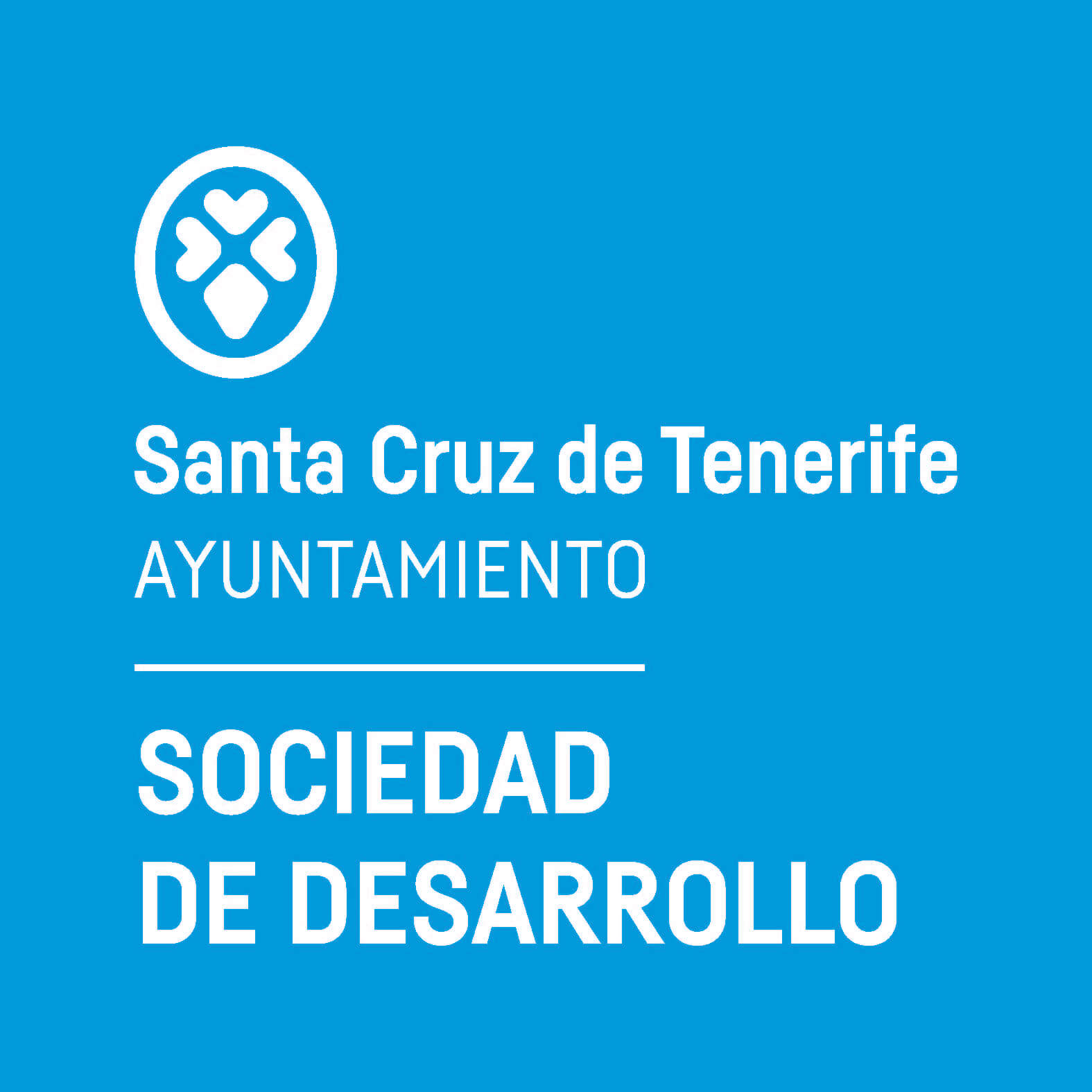 Ayuntamiento - S.Desarrollo