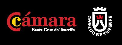 Curso de Comunicación No Verbal Camara de Comercio de Tenerife y Cabildo de Tenerife